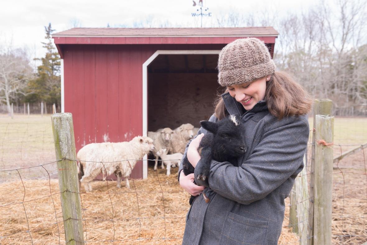 Sheep_Farm_Felt_0079